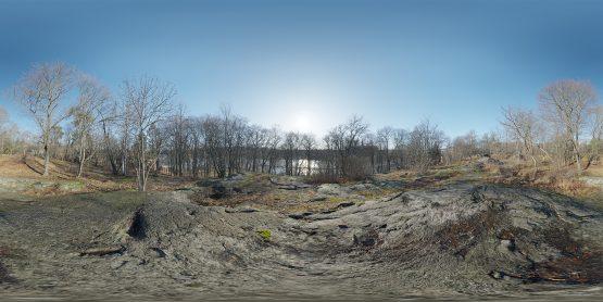 HDRI – Nobelparkens arboretum (senvinter, middag) – förhandsgranskning (EV 11.40; Filmic Blender)