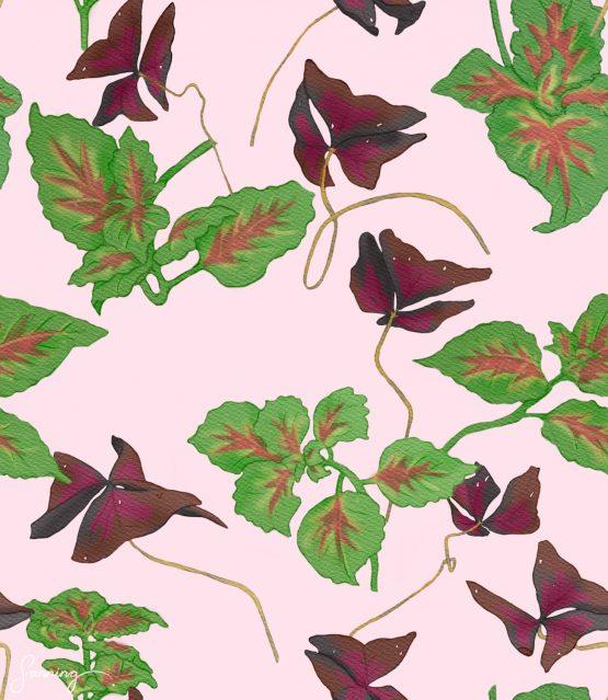 Blommönster – Oxalis och palettblad