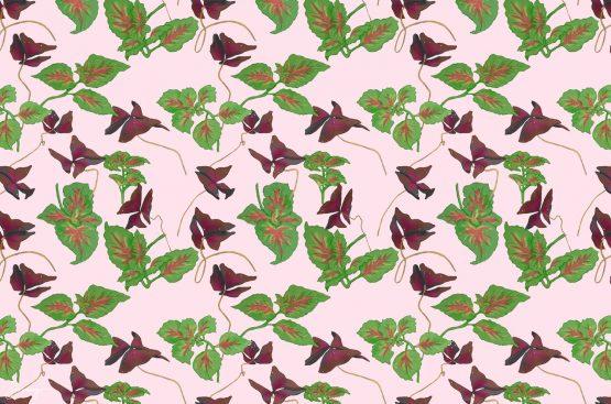 Blommönster – Oxalis och palettblad – förhandsgranskning av mönster