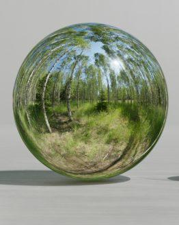HDRI – Björkdunge (sommar, sen förmiddag) – spegeldank utan horisont (EV 11.55; Filmic Blender)