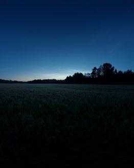 HDRI – Månskenslöst fält (sommar, midnattsskymning) – förhandsgranskning (EV -0.50; Filmic Blender)