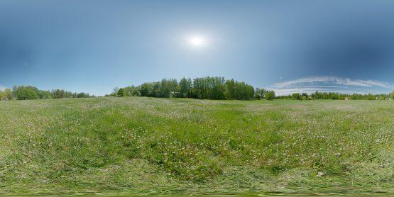 HDRI – Maskrosfält (sommar, middag) – förhandsgranskning (EV 12.25; Filmic Blender)