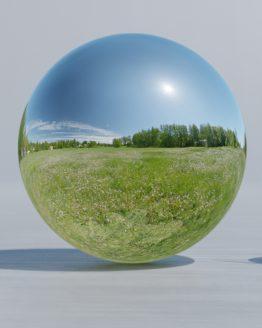HDRI – Maskrosfält (sommar, middag) – spegeldank utan horisont (EV 12.25; Filmic Blender)