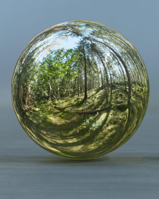 HDRI – Skogsmosse (sommar, eftermiddag) – spegeldank utan horisont (EV 8.25; Filmic Blender)