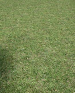 Material – Gräsmatta 2 – förhandsgranskning av mönsterrepetition